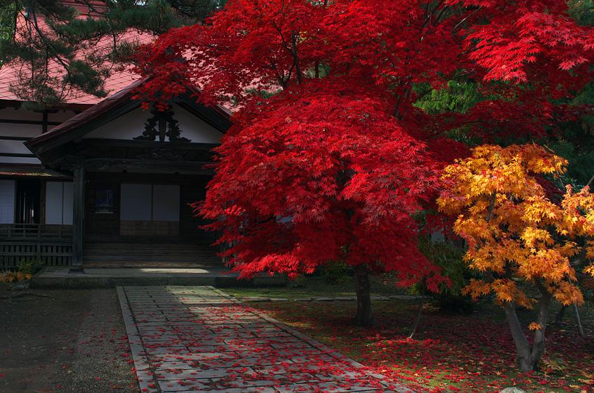 写真4 棟方家一族の墓がある弘前市宗徳寺